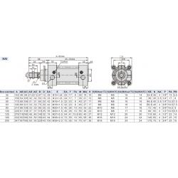 SAI Ø125 Cilindru Pneumatic Patrat Cu Dubla Actiune, Franare Si Magnet
