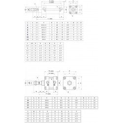Cilindri pneumatici ø40 ISO 15552